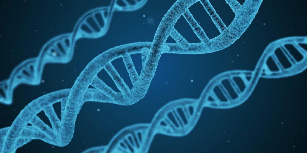"""Ricerca: """"Identificati geni che regolano la comparsa di tumori nella sclerodermia"""""""