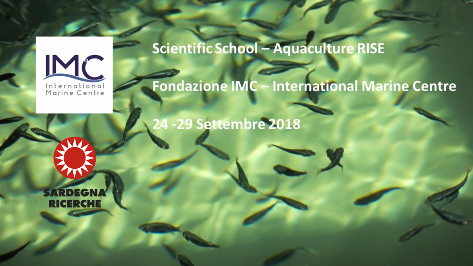 Apre a Torregrande la Scientific School Aquaculture RISE