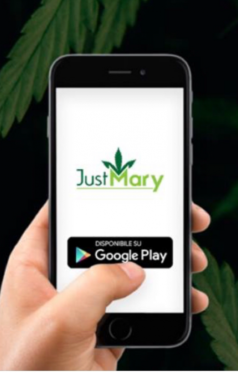 justmary_1